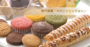 マドレーヌ4種類 ロングパイ 2種類 クッキー 種類